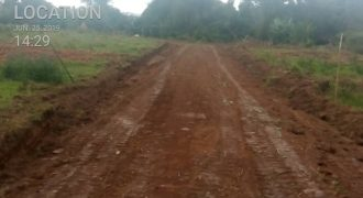Plots for sale in Mubende at shs 3,500,000