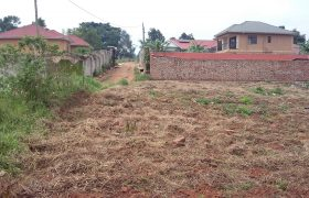Plots for sale in Busiika at shs 50,000,000