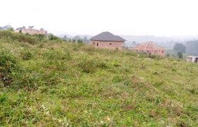 Plots for sale in Busiika town at shs 45,000,000