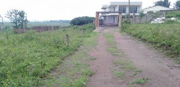 Plots for sale in Myanzi Mitiyana at shs 7,000,000