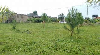 Plots for sale in Zirobwe at shs 13,000,000