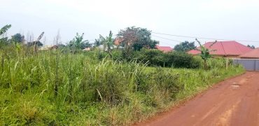 Plots for sale in Namulonge Gayaza at shs 75,000,000