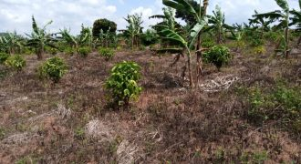 Plots for sale in Busiika Natyole at shs 45,000,000