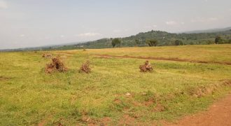 Plots for sale in Mukono Namayiba estate at shs 30,000,000