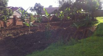 Plots for sale in Manyangwa at shs 30,000,000