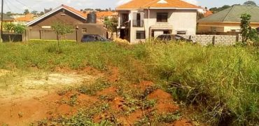 Plots for sale in Kiwenda at shs 18,000,000