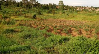 Plots for sale in Namayina at shs 40,000,000